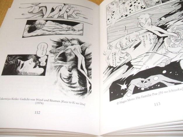 [Subculture works.] Phänomen Manga Sample 3