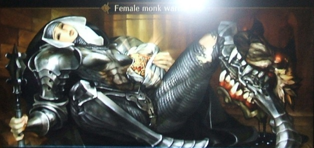 [Subculture works.] Dragon's Crown - NPC Female Monk Warrior